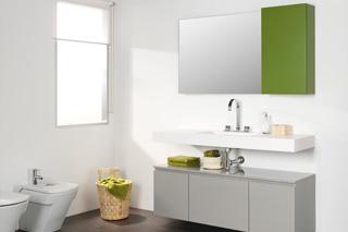 Mueble de Baño Zero color Ceniza y Verde Hiedra
